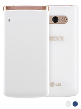 LGM-X100.jpg